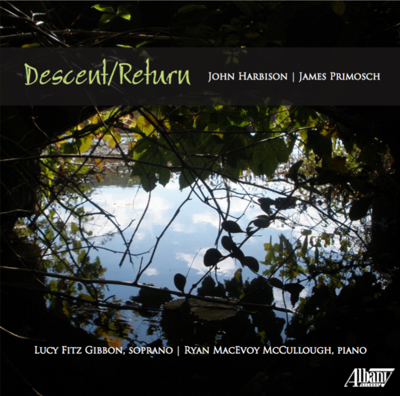 descent return cover